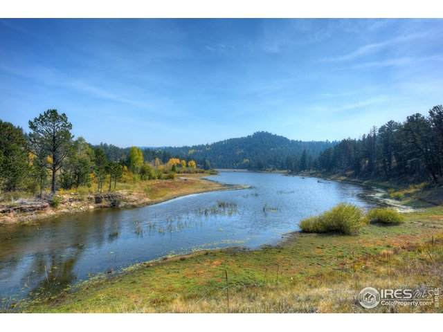 339 Cedar Dr, Lyons, CO 80540 (#925763) :: Realty ONE Group Five Star