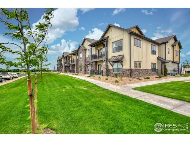 6582 Crystal Downs Dr #205, Windsor, CO 80550 (MLS #929043) :: Wheelhouse Realty