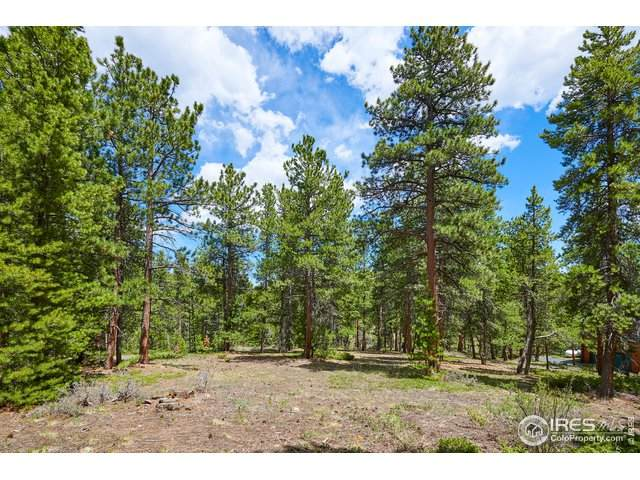 980 Peak To Peak Hwy, Nederland, CO 80466 (MLS #930979) :: Wheelhouse Realty