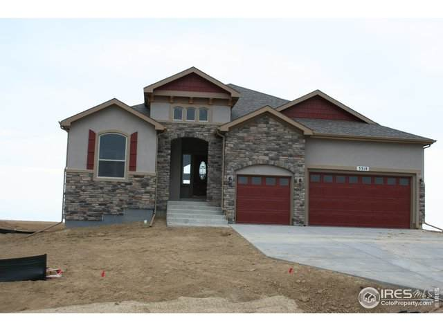5520 Tullamore Ct, Timnath, CO 80547 (#933514) :: My Home Team