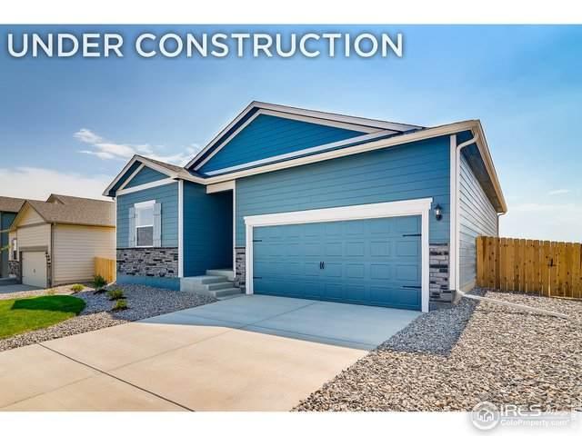 993 Cascade Falls St, Severance, CO 80550 (MLS #934250) :: Wheelhouse Realty