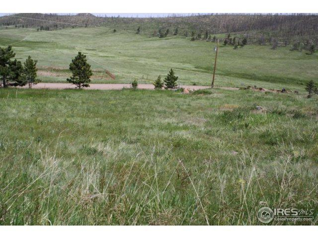1191 Eiger Rd, Livermore, CO 80536 (MLS #751710) :: 8z Real Estate
