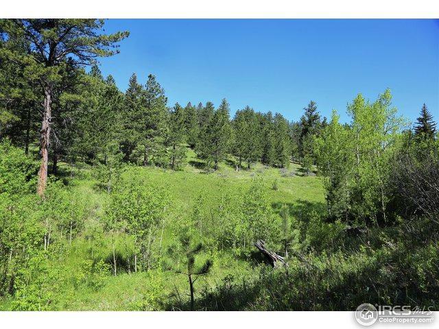 0 County Road 59, Allenspark, CO 80510 (MLS #785935) :: 8z Real Estate