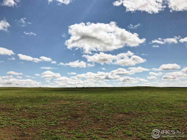 0 County Road 11 - Lot 1, Wellington, CO 80549 (MLS #811796) :: 8z Real Estate