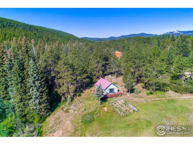 155 Cumberland Gap Rd, Nederland, CO 80466 (MLS #812001) :: 8z Real Estate