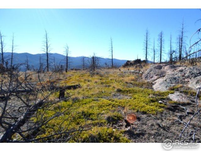 1989 Spencer Mountain Rd, Bellvue, CO 80512 (MLS #812505) :: 8z Real Estate