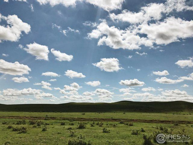 0 County Road 11 - Lot A, Wellington, CO 80549 (MLS #816168) :: 8z Real Estate