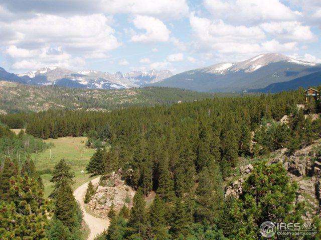 0 Pine Cone Cir, Ward, CO 80481 (MLS #823858) :: 8z Real Estate