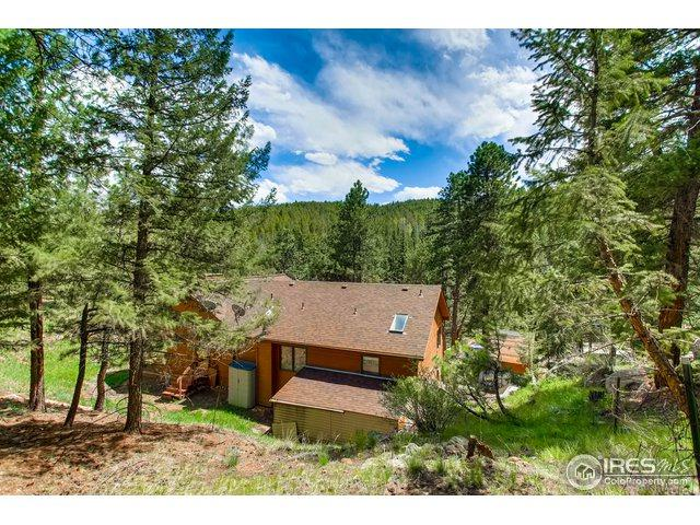 7027 S Brook Forest Rd, Evergreen, CO 80439 (MLS #850850) :: 8z Real Estate