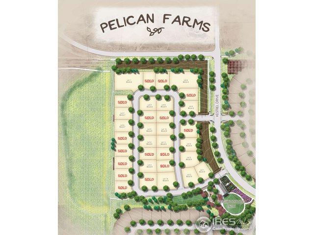 961 Pitch Fork Dr, Windsor, CO 80550 (MLS #857106) :: 8z Real Estate