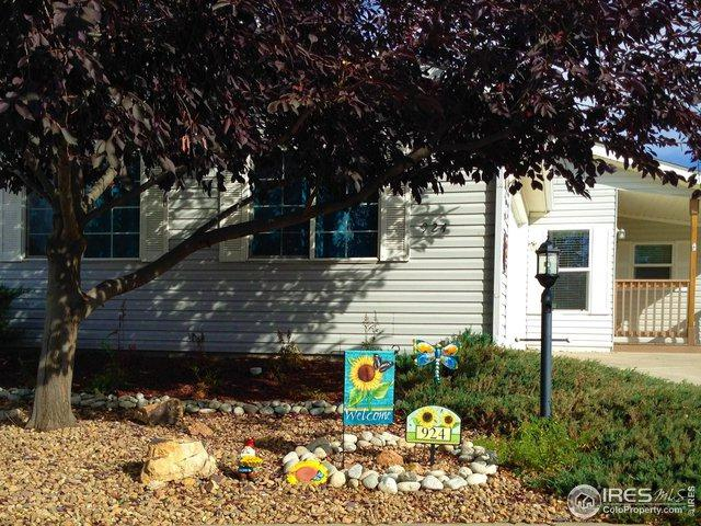 924 Vitala Dr, Fort Collins, CO 80524 (MLS #866540) :: 8z Real Estate