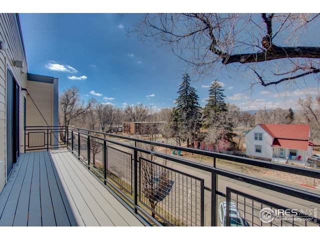 302 N Meldrum St #304, Fort Collins, CO 80521 (MLS #876604) :: Hub Real Estate