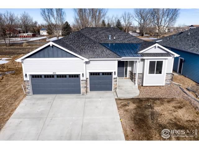 855 Shirttail Peak Dr, Windsor, CO 80550 (MLS #877971) :: Kittle Real Estate