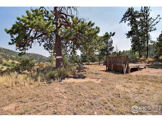 1137 Beartrap Rd, Red Feather Lakes, CO 80545 (MLS #893660) :: Kittle Real Estate