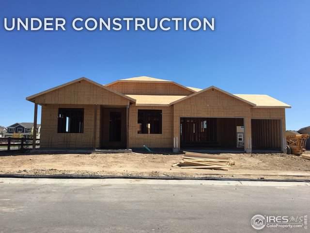 2145 Day Spring Dr, Windsor, CO 80550 (MLS #894836) :: 8z Real Estate