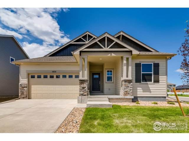 1870 Paley Dr, Windsor, CO 80550 (MLS #909410) :: 8z Real Estate