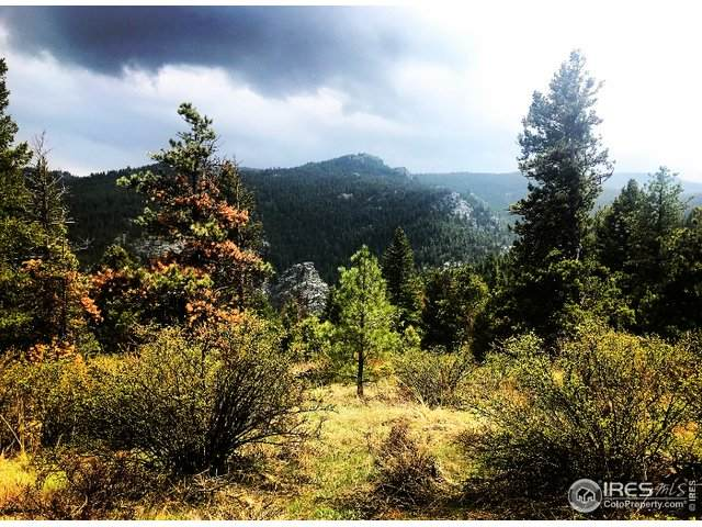3100 Ridge Rd, Nederland, CO 80466 (MLS #911629) :: Jenn Porter Group