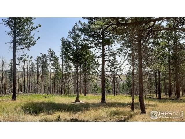 700 Dirt Rd, Bellvue, CO 80512 (MLS #917563) :: 8z Real Estate