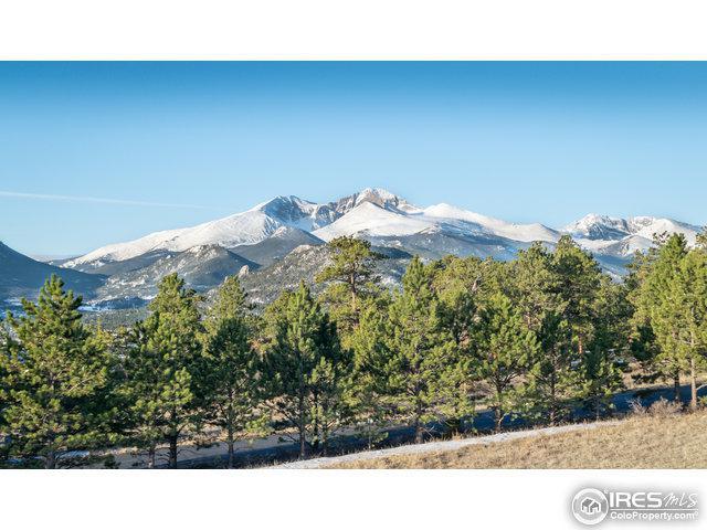 510 Little Beaver Dr, Estes Park, CO 80517 (MLS #798850) :: 8z Real Estate