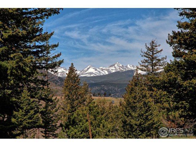 605 Left Fork Rd, Boulder, CO 80302 (MLS #821126) :: 8z Real Estate