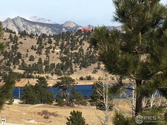 2625 Marys Lake Rd 11B, Estes Park, CO 80517 (MLS #841459) :: The Daniels Group at Remax Alliance