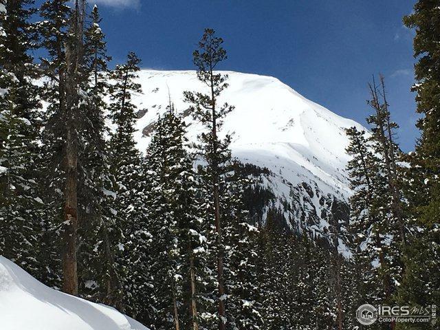 465 Quandary View Dr, Breckenridge, CO 80424 (MLS #880310) :: 8z Real Estate