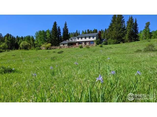 198 W Dory Way, Black Hawk, CO 80422 (MLS #939253) :: 8z Real Estate