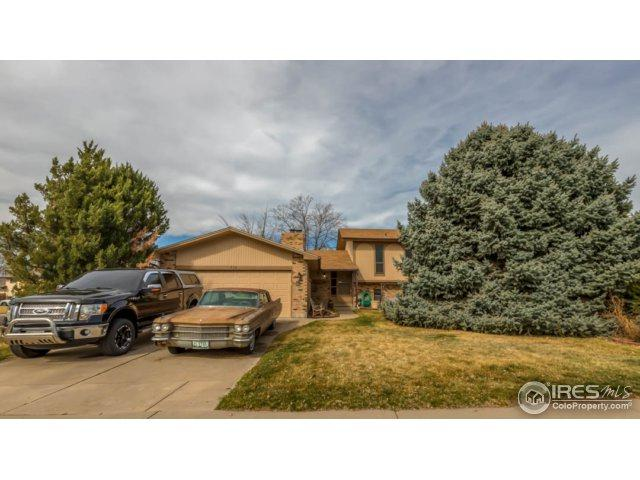 512 Spruce Mountain Ct, Windsor, CO 80550 (MLS #845530) :: The Daniels Group at Remax Alliance