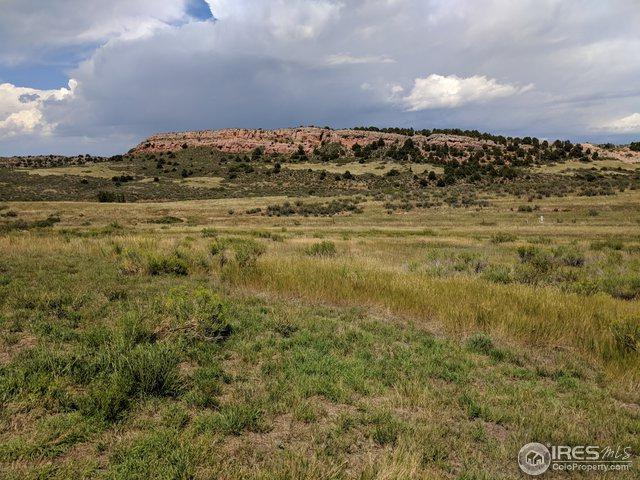 124 Springs Ranch Rd, Laporte, CO 80535 (MLS #858679) :: The Daniels Group at Remax Alliance