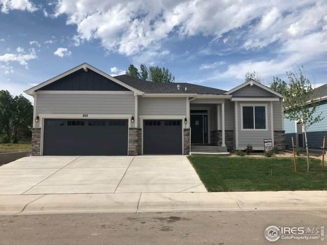 855 Shirttail Peak Dr, Windsor, CO 80550 (MLS #877971) :: Wheelhouse Realty