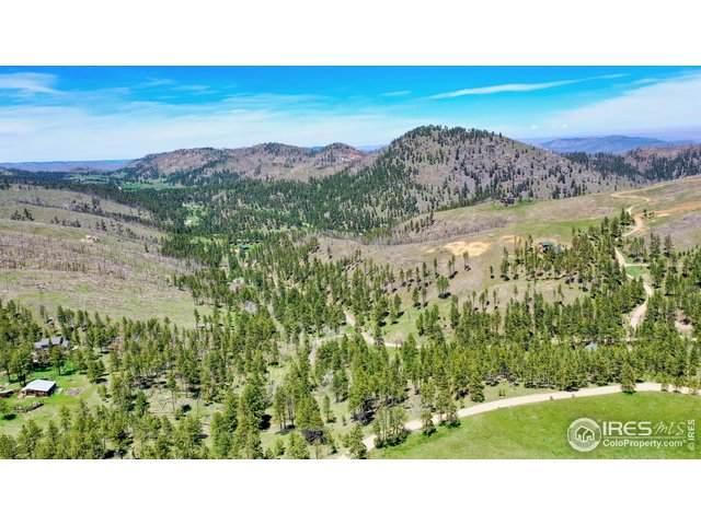 1033 Davis Ranch Rd, Bellvue, CO 80512 (MLS #912366) :: Neuhaus Real Estate, Inc.