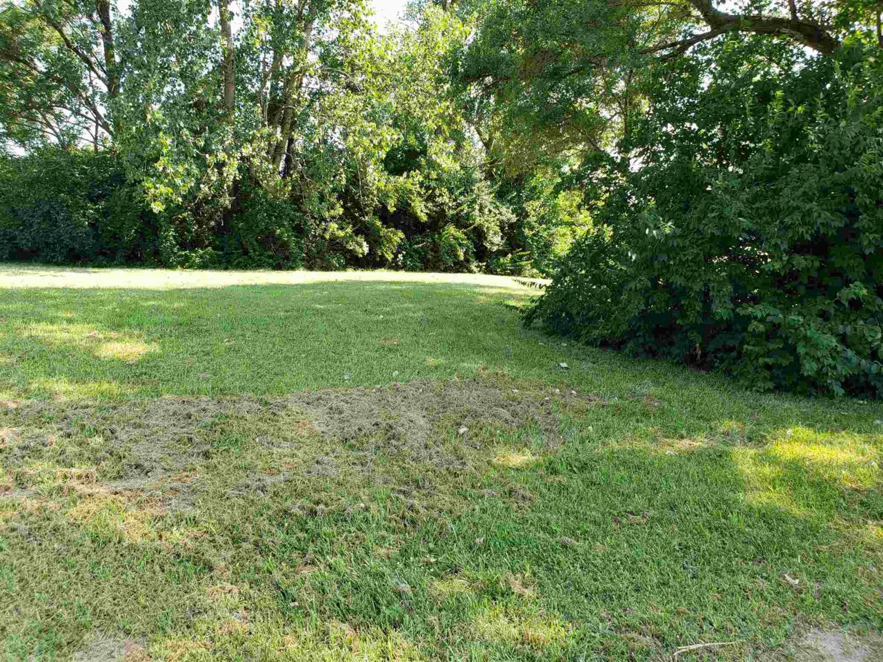 Lot 51 Caroline Avenue - Photo 1