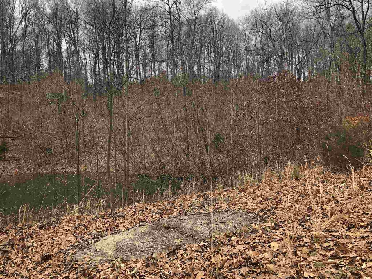 6.63 +/- Acres Franklin Road - Photo 1