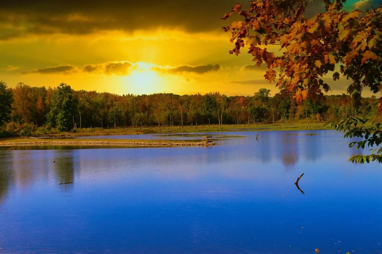 400 acres Sr 450 - Photo 1
