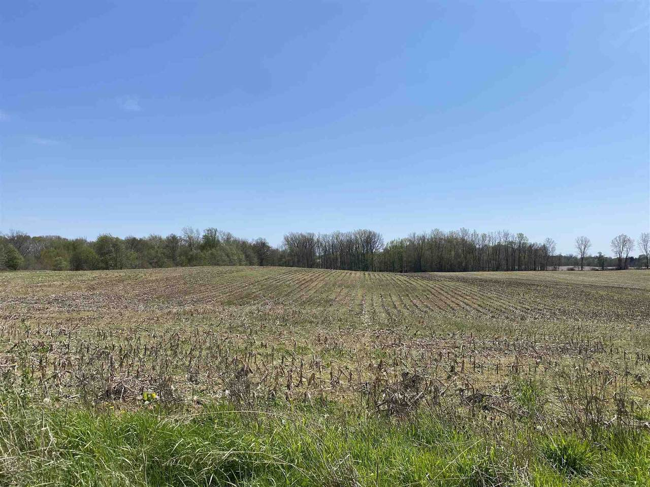 TBD 450 South Road - Photo 1
