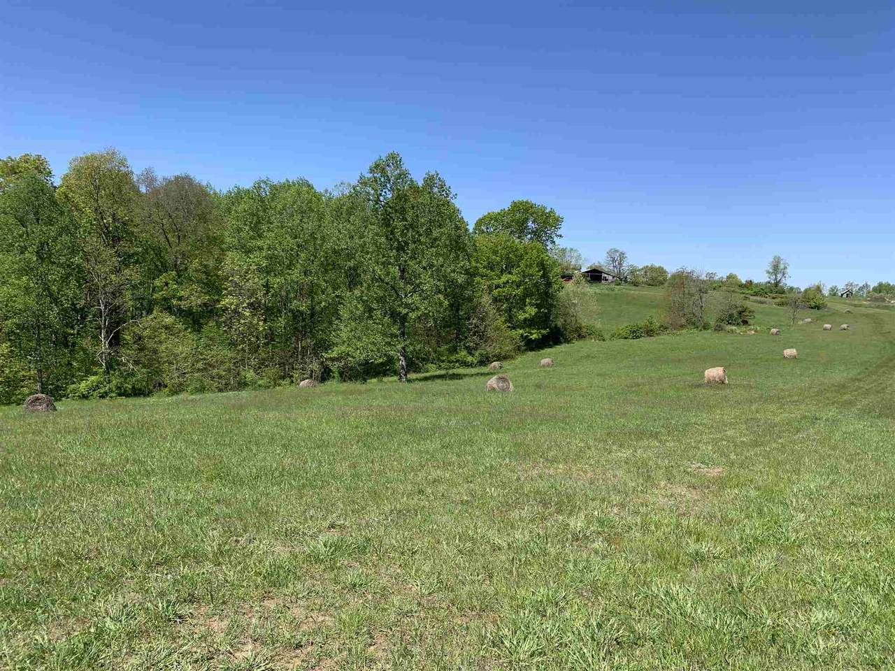 Lot 13 State Road 45 Highway - Photo 1