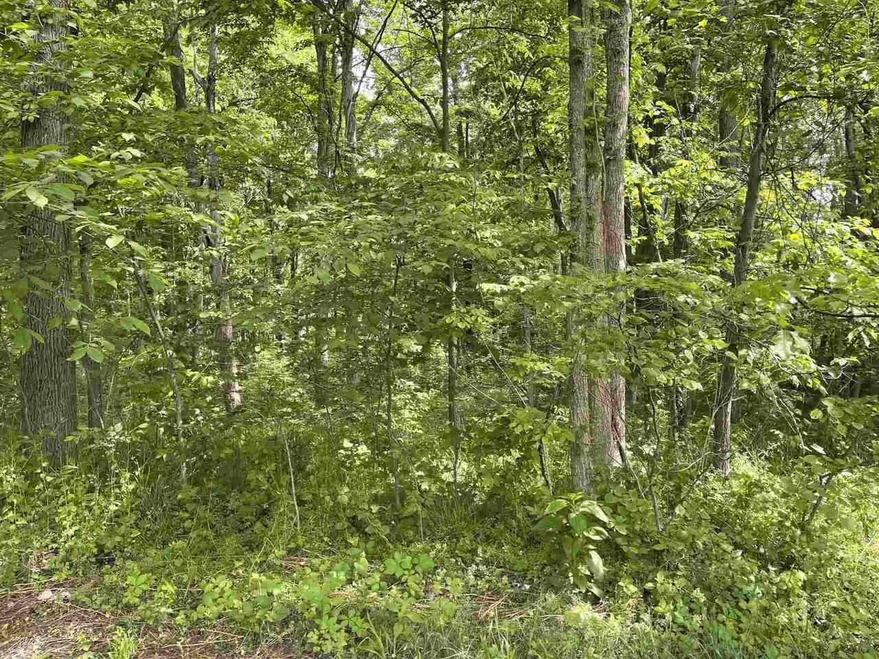 0 Maplewood Trail - Photo 1