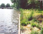 21914 County Road 10 E Road - Photo 1