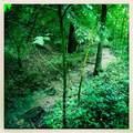 8787 Baby Creek Road - Photo 2