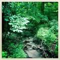 8787 Baby Creek Road - Photo 3