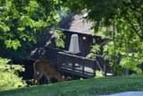 1810 Eagle Bay Drive - Photo 24