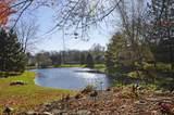 1515 Lake George Drive - Photo 36