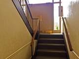 1428 Marigold Way - Photo 2