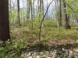 440 Timber Pass Vop - Photo 10