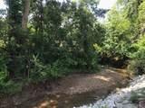 1056 Ruby Creek Drive - Photo 4
