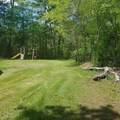 13797 Willow Creek Drive - Photo 17