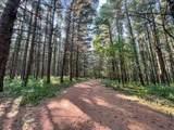 355 Lane 100 Pine Canyon Lane - Photo 36