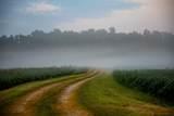 9092 Bentonville Road - Photo 2