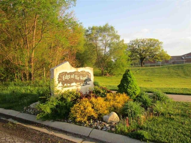 Lot 43 Gentry Lane Lane, New Carlisle, IN 46552 (MLS #201622169) :: The Dauby Team