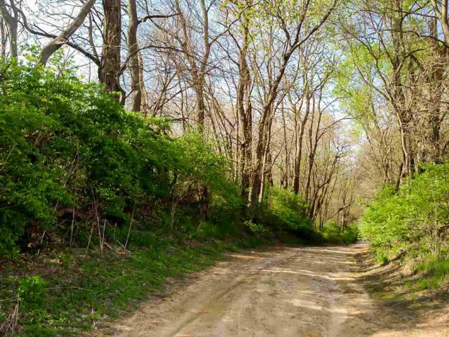 03 Old State Road 65, Owensville, IN 47665 (MLS #201711757) :: The ORR Home Selling Team